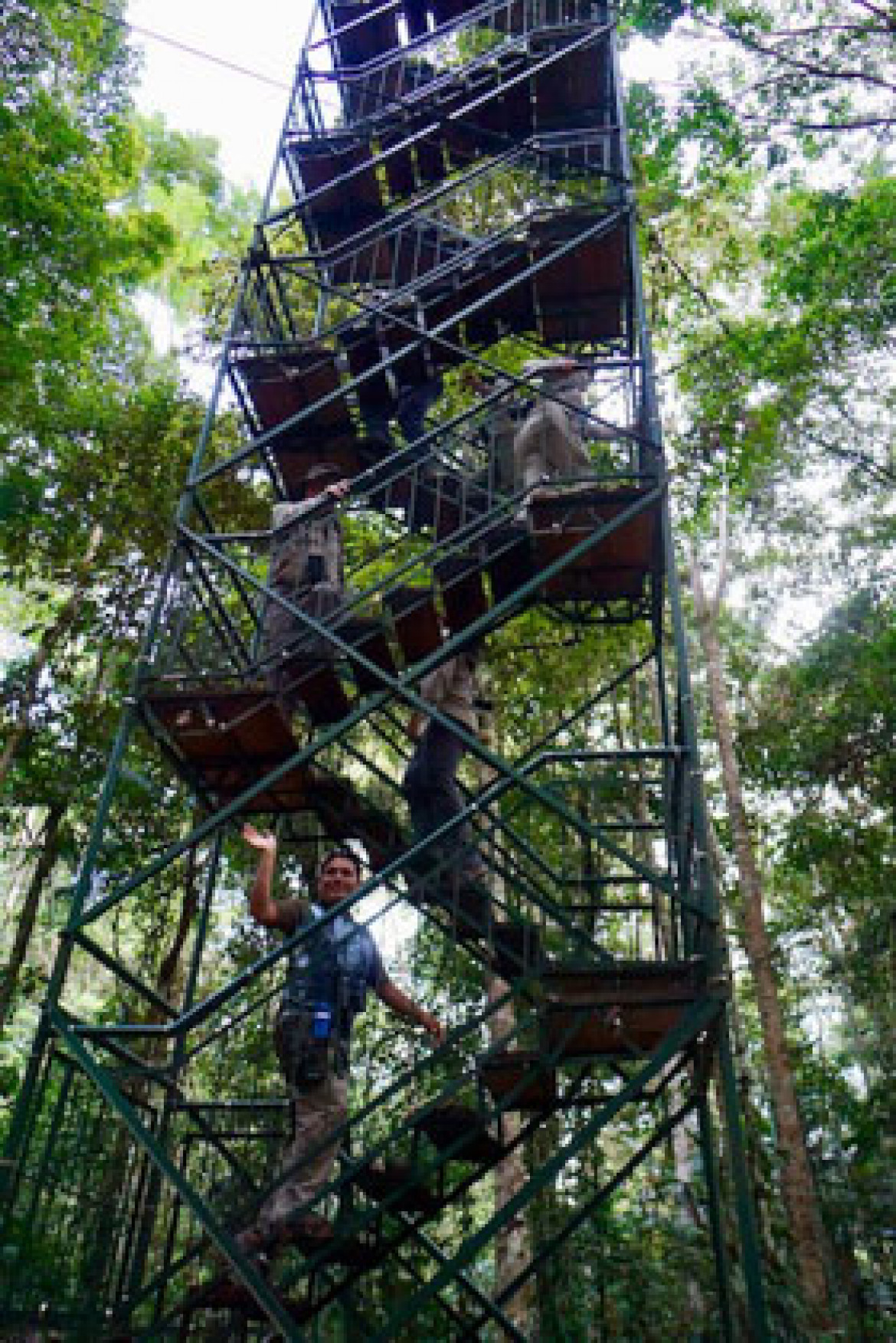 going up canopy